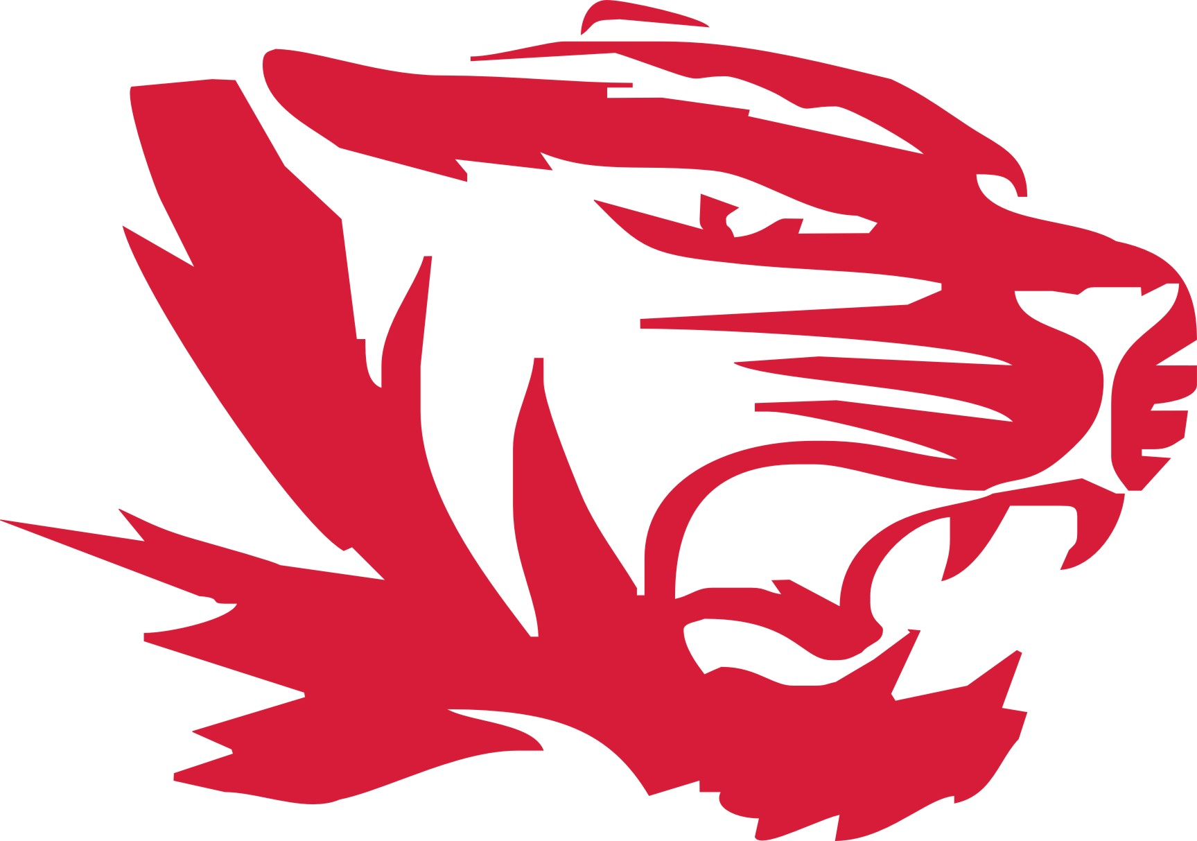 New football tiger head 2013